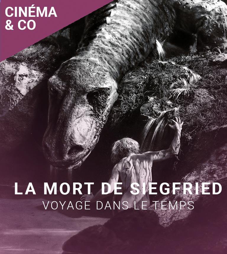 VOYAGE DANS LE TEMPS : Les Nibelungen, la mort de Siegfried