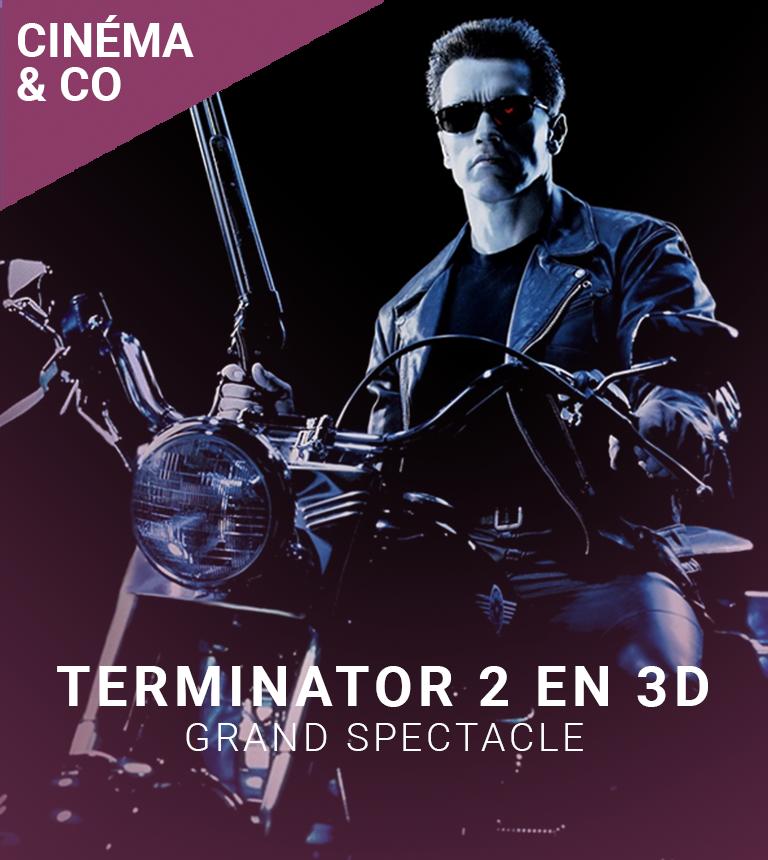 GRAND SPECTACLE : Terminator 2 en 3D