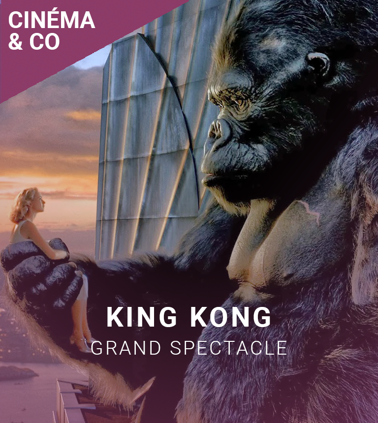 GRAND SPECTACLE : King Kong